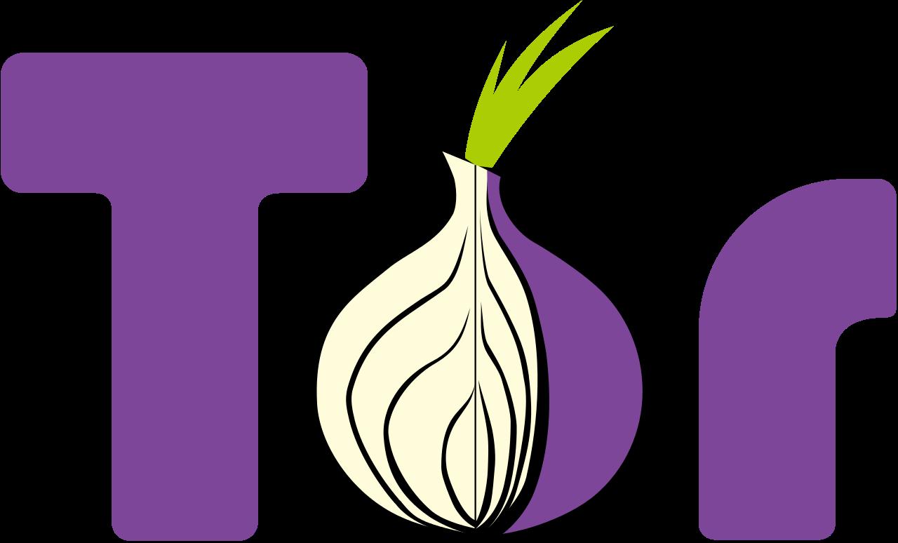 Tor Logo - Tor vs VPN